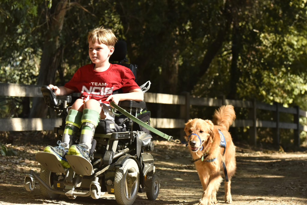 lucas-cook-on-walk-%26-roll-photo-credit-jeff-mitchell